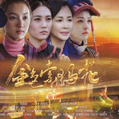 总台出品脱贫攻坚题材剧《金色索玛花》首播发布会在京举行